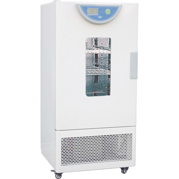 一恒霉菌培養箱BPMJ-250F