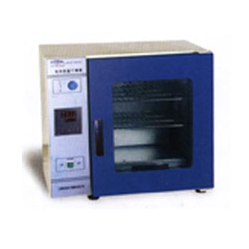 上海恒宇电热恒温干燥箱GZX-DH.300-BS-II