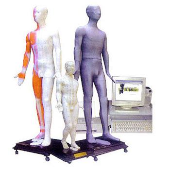 人体针灸穴位发光模型JAW-100E