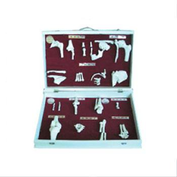 人体骨关节分类模型KAR/11212