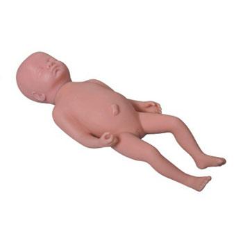 高級足月胎兒模型KAR/Y1