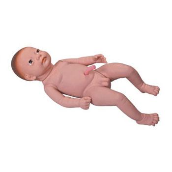 高级出生婴儿附脐带模型KAR/Y3
