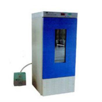 上海博泰恒温恒湿培养箱LRHS-250B型